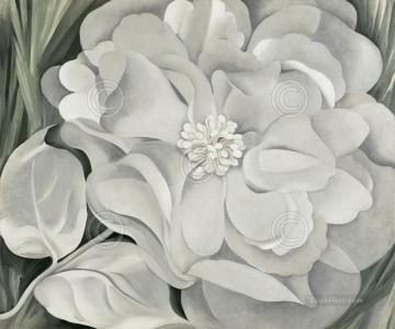 100 Great Art Painting - White Calico Flower