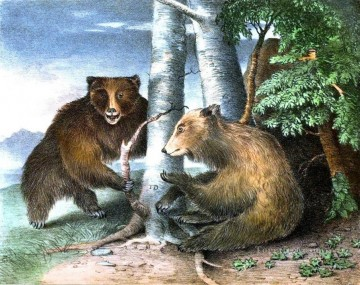 Bear Grizzly bea Oil Paintings
