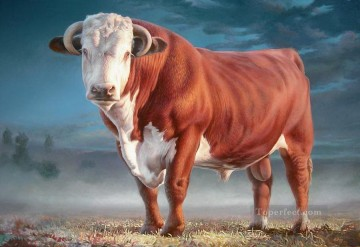 hereford bull Oil Paintings