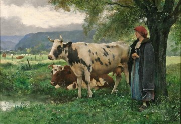 cows and country girl Oil Paintings