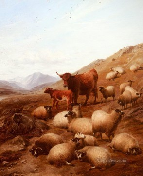 bulls Canvas - Cooper Thomas Sidney 1803 1902 In The Highlands bulls