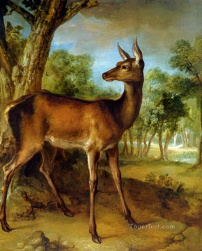 Animal Painting - The Watchful Doe