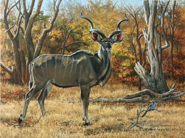 deer kudu bull Oil Paintings