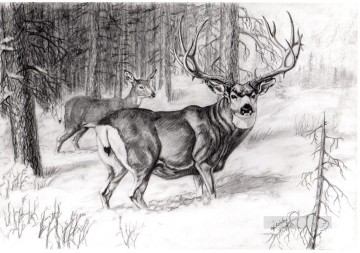 deer pencil drawing Oil Paintings