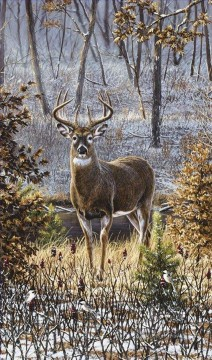 Animal Painting - lonely whitetail