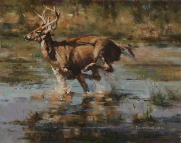 running whitetail in swamp Oil Paintings