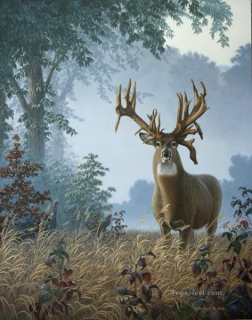 Animal Painting - whitetail on morning