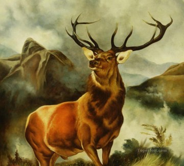 am247D animal deer Oil Paintings