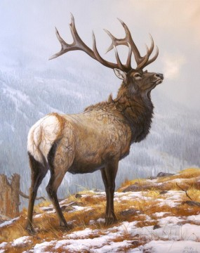 dw008iD animal deer Oil Paintings