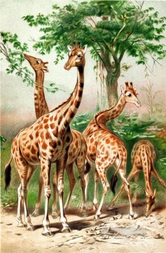 Animal Giraffe Oil Paintings