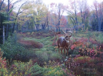 Animal Painting - Autumn landscape WhitetailL