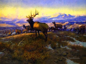 Animal Painting - the exalted ruler 1912 Charles Marion Russell deer