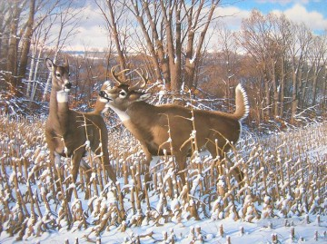 Animal Painting - whitetail 13