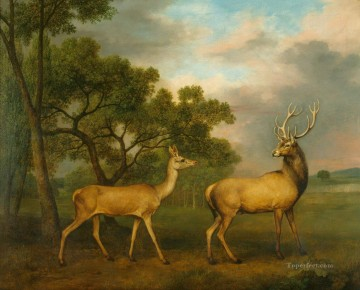 am052D13 animal deer Oil Paintings