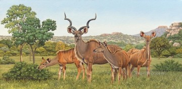 Africa Works - african kudus