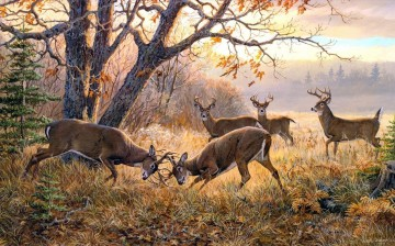 Deer Painting - fighting whitetails