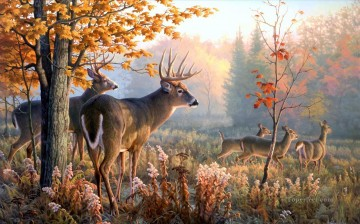 Deer Painting - whitetail in autumn