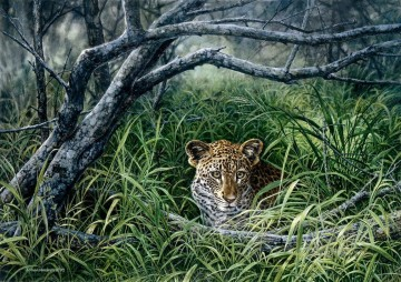 leopard 16 Oil Paintings