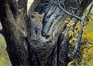 leopard 19 Oil Paintings