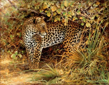 leopard 3 Oil Paintings