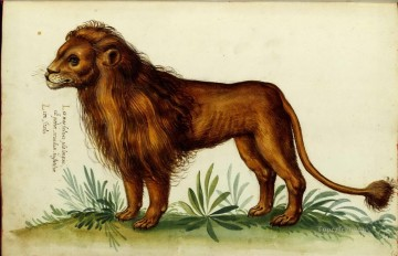 Animal Lion Italian Oil Paintings