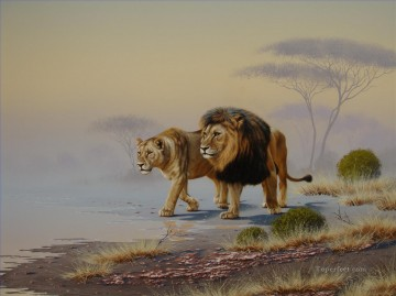 lion 23 Oil Paintings