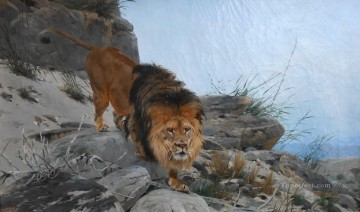 lion 3 Oil Paintings