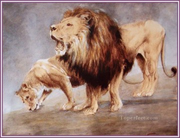lion 5 Oil Paintings