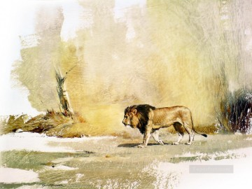 wild lion Oil Paintings