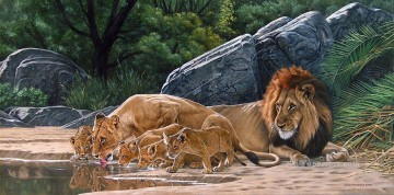 lion pride drinking Oil Paintings