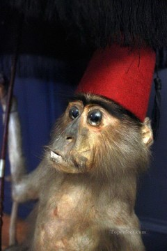Animal Painting - little monkey with red hat