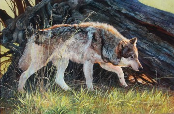 wolf 1 Oil Paintings