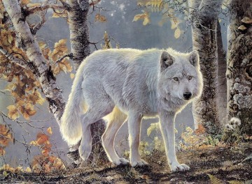 wolf in birch Oil Paintings