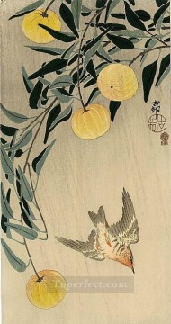 Animal Painting - cuckoo early summer s rain Ohara Koson birds