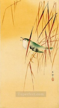 Animal Painting - songbird in reeds Ohara Koson birds