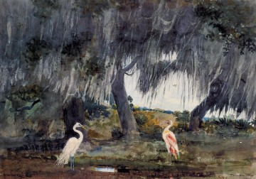 Bird Painting - At Tampa Realism marine painter Winslow Homer birds