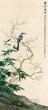 Bird Painting - Chang dai chien bird in Spring old China ink birds