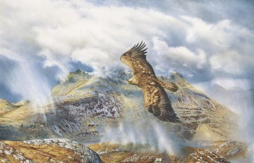 Golden Eagle over Arnisdale birds Oil Paintings