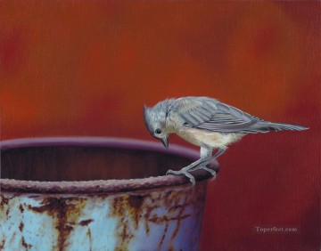 bird watching into a can Oil Paintings