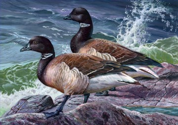 birds on rock seaside Oil Paintings