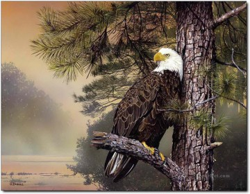 Bird Painting - eagle at sunet birds