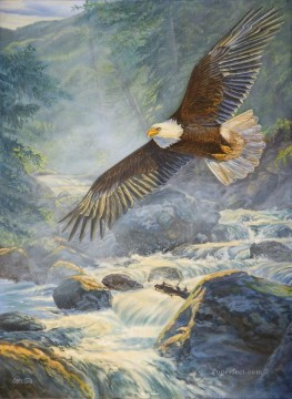 eagle on stream birds Oil Paintings