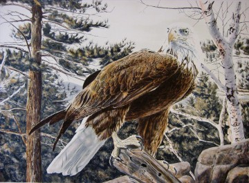 eagle on white tree birds Oil Paintings