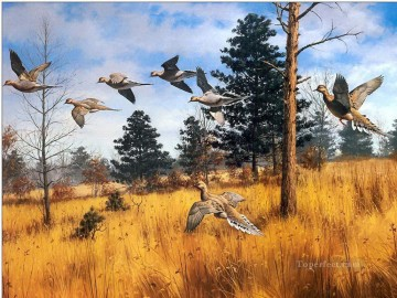 migratory bird in autumn Oil Paintings