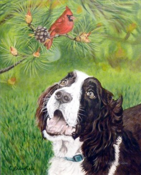 Bird Painting - parrot and dog birds