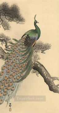 Bird Painting - peacock 1 Ohara Koson birds
