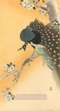 Bird Painting - peacock Ohara Koson birds