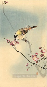 Animal Painting - songbird on plum blossom Ohara Koson birds