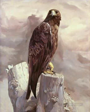 Animal Painting - thinking eagle birds