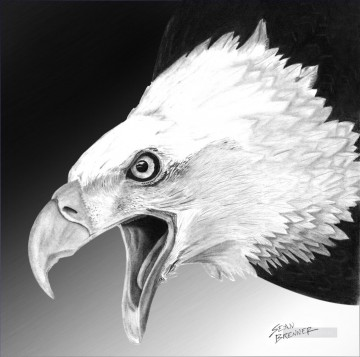 Bird Painting - white eagle birds